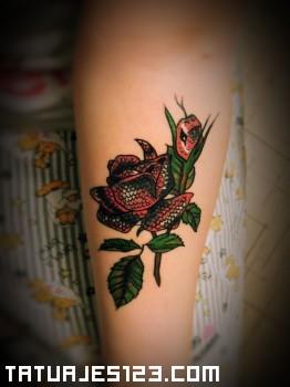 Rosa y serpiente