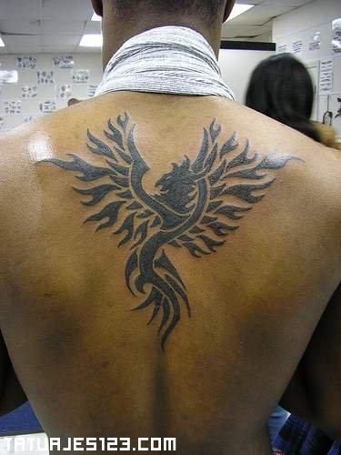 Tatuajes Hombre Ave Fenix sencillo ave fenix - tatuajes 123