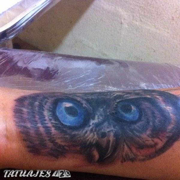 Mirada De Buho Tatuajes 123