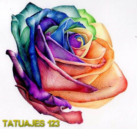 Más de 1000 ideas sobre Rosas en Pinterest | Rosas De