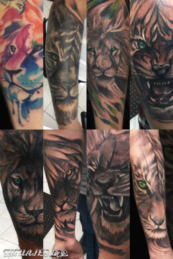 Leones y tigres