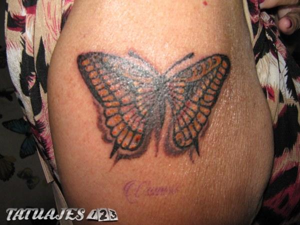 Mariposa a color