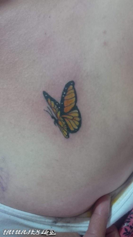 Mariposa pequeña en la espalda