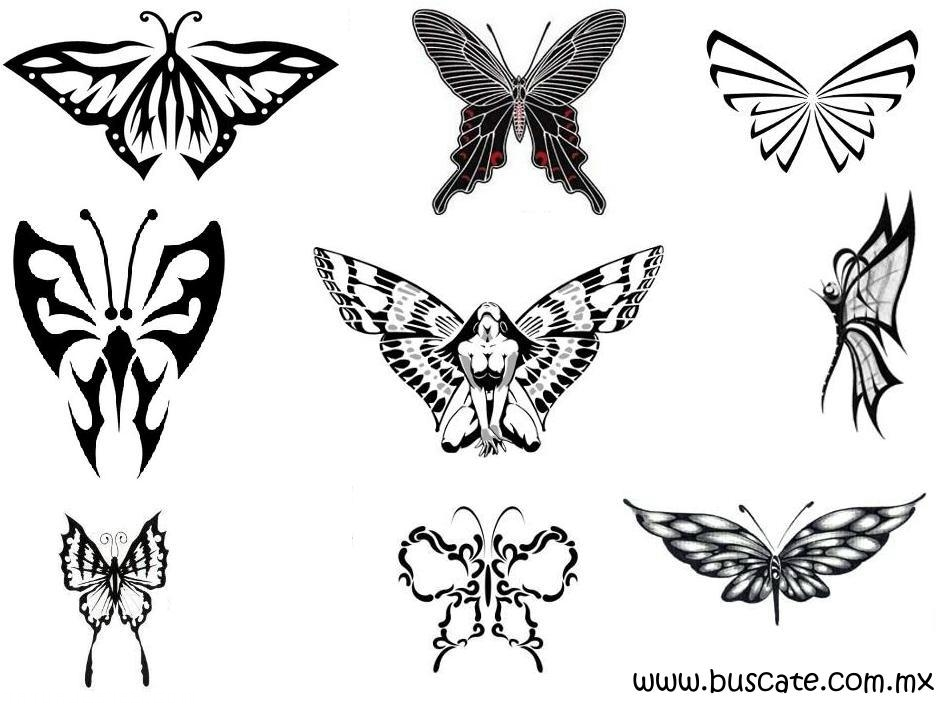 Diferentes formatos de mariposas