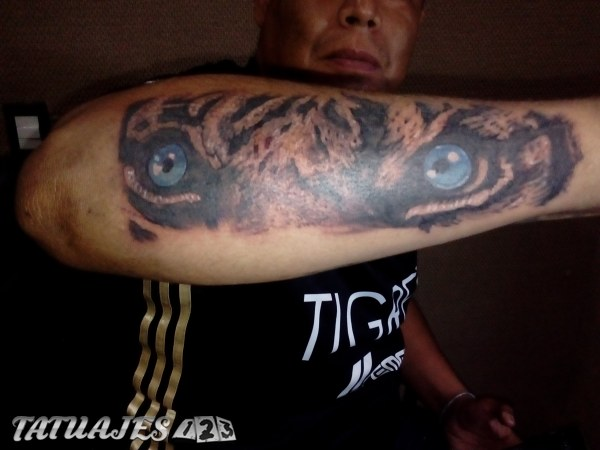 Ojo de tigre tattoo