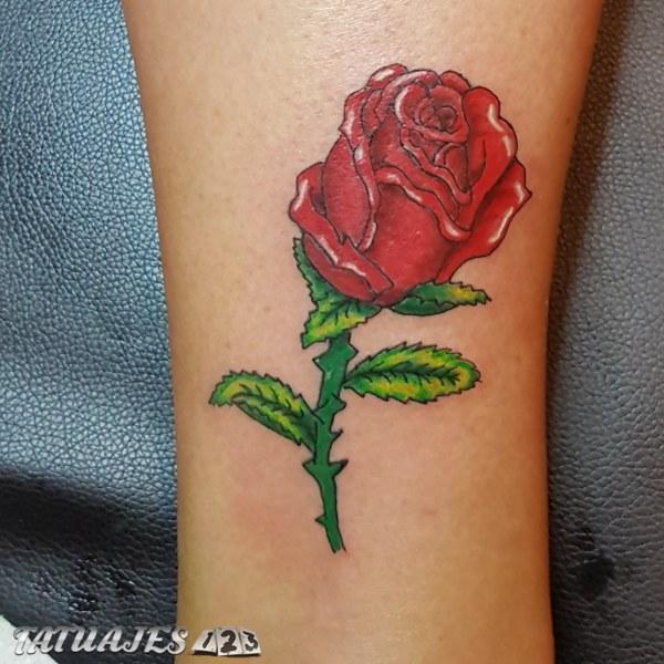 Rosa en colores vivos