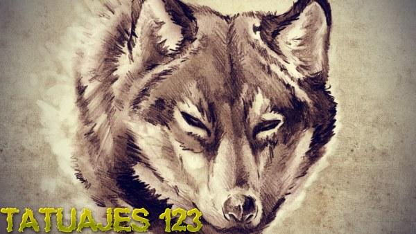 Significado De Los Tatuajes De Lobos Tatuajes 123