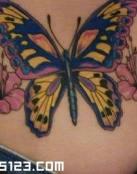 Mariposa entre las Flores