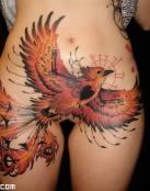 Aguila en el cuerpo