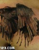 Cuervos