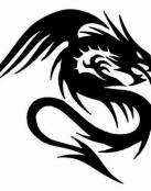 Dragón en negro