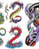 Diseños varios de dragones