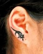 Gato en la oreja