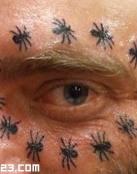 Hormigas en el ojo