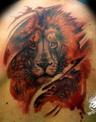 León a color