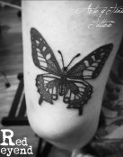 Mariposa Dotwork realizada por Red Leyend Tattoo