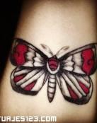 Mariposa alas rojas
