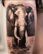 Tatuaje de elefante muy realista