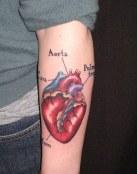 Tatuaje partes del corazón
