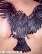 Águila de aspecto pétreo
