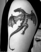 Cuerpo de dragón volador