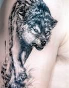 Lobo agresivo