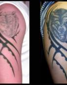 Tatuaje de un lobo en el brazo