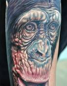 Simplemente un Mono
