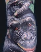 Gorila con mirada cómica