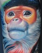 Mono de aspecto afable