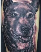 Perro de color oscuro