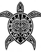 Una tortuga maori