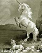 Diseño precioso de una familia de unicornios