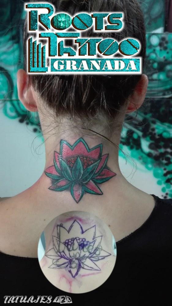 Cover con flor de loto