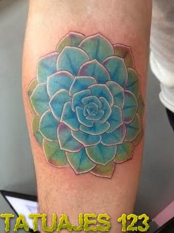 Pon un cactus en tu brazo