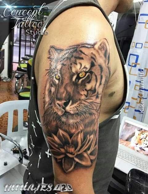 Tigre y loto